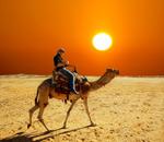 Beduins d'aigua dol�a