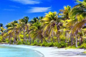 Caraïbes, Jamaïque, île, Isla Contoy, plage, baignade,