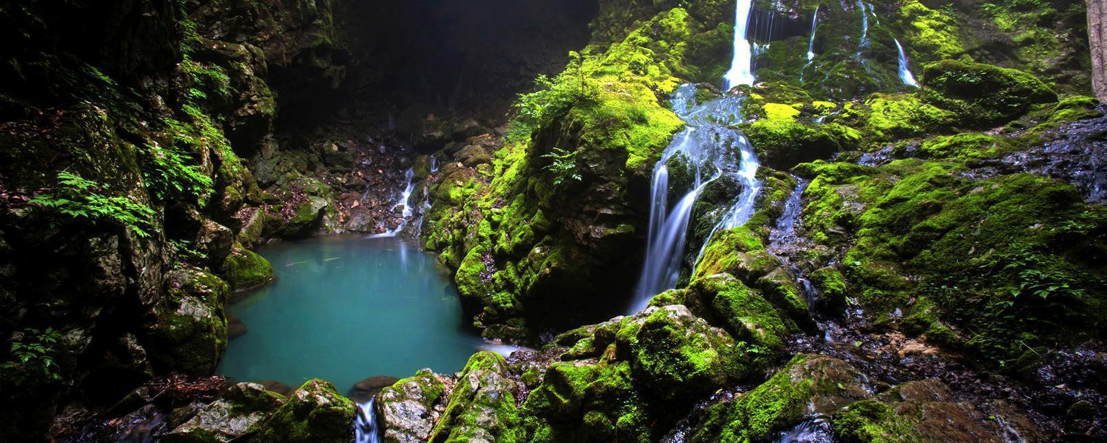 Asie, Corée du Sud, cascade, chute, rivière, forêt,