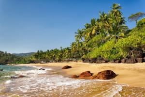 Asie, Sri Lanka, Goa, plage, Cola Beach, baignade, arbre,