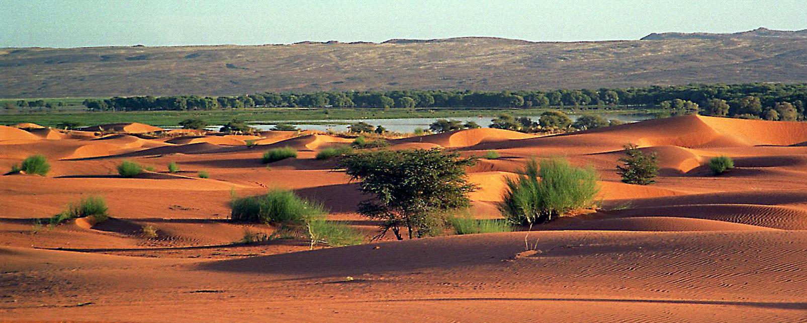 La Mauritanie - Christine Daure-Serfaty