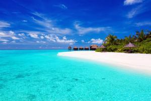 Océan Indien, Asie, Maldives, plage, baignade, bungalow, sable, mer, arbre,