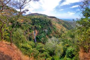 Afrique, Malawi, Livingstone, Manchewe, chute, cascade, jungle, arbre,
