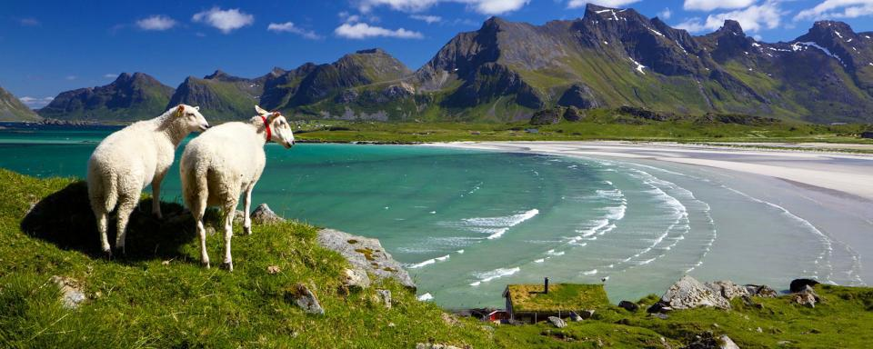 descubre nuestra seleccin de hoteles para tu estancia en noruega