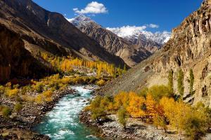 Asie, Pakistan, Ghizer, rivière, vallée, montagne, arbre,