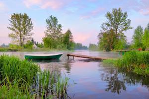 Europe, Pologne, rivière, Narew, passerelle, barque, arbre, maison, brouillard,