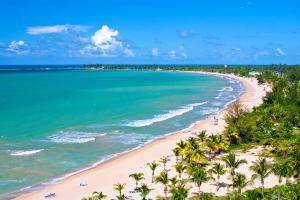 Caraïbes, Porto Rico, San Juan, plage, baignade, sable, mer, palmier,