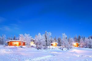 Europe, Suède, châlet, forêt, arbre, neige,
