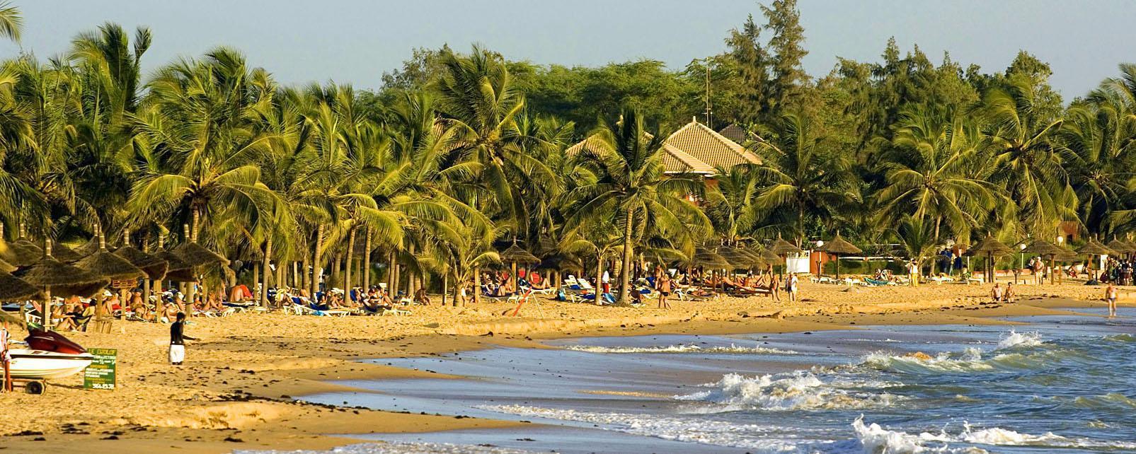 Afrique, Sénégal, Saly, plage, baignade, arbre, île,