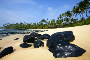 Afrique, São Tomé et Principe, Sao Tome et Principe, île, plage, baignade, arbre, rocher,