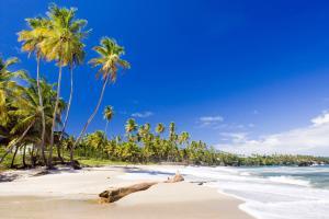 Caraïbes, Trinidad et Tobago, Trinidad, Cumana, plage, baignade,