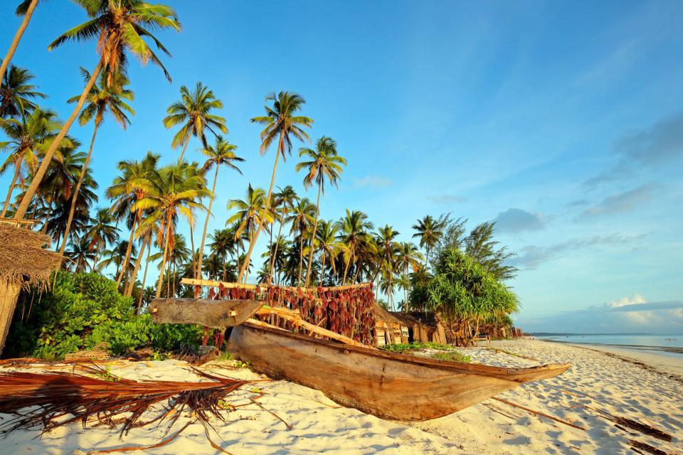 Afrique, Tanzanie, Zanzibar, île, pirogue, canot, arbre,