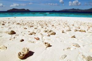 Océan Indien, Mayotte, plage, baignade, sable, mer,
