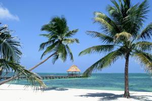 Amérique, Amérique centrale, Belize, plage, baignade, passerelle, sable, palmier, océan, mer,