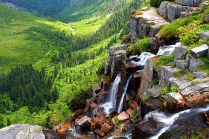 Europe, République tchèque, Krkonose, cascade, Pancavsky, rocher, forêt, arbre,