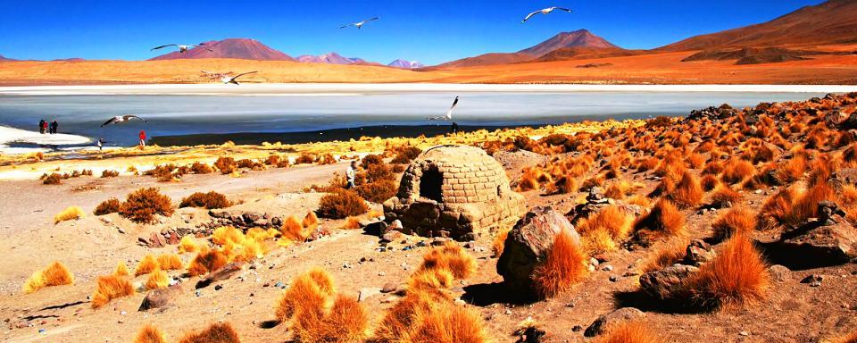 vuelos a bolivia comparar vuelos baratos bolivia On viajes a bolivia baratos