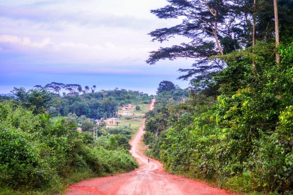 afrique, liberia, route, nord