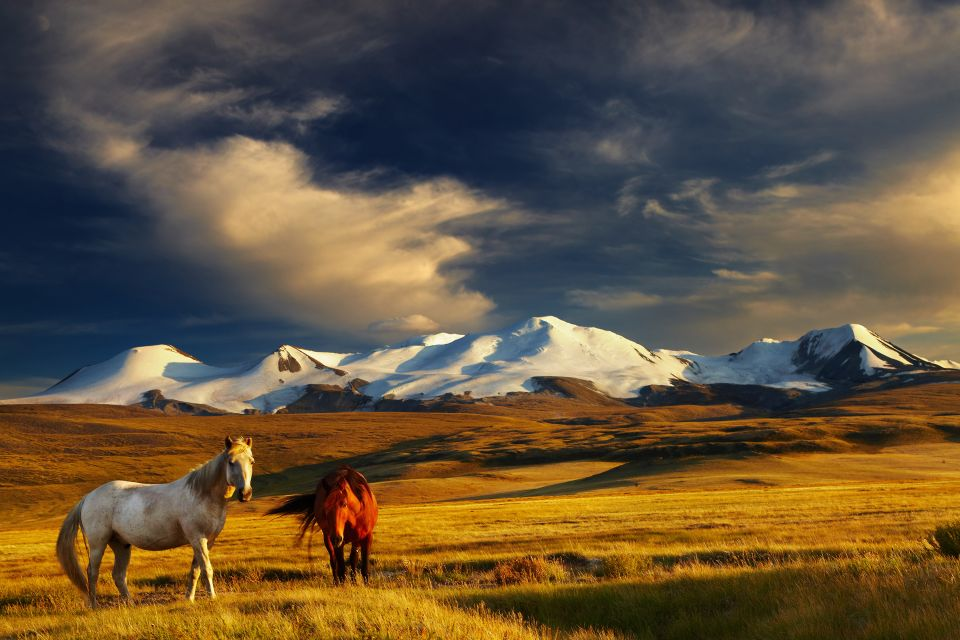 Asie, mongolie