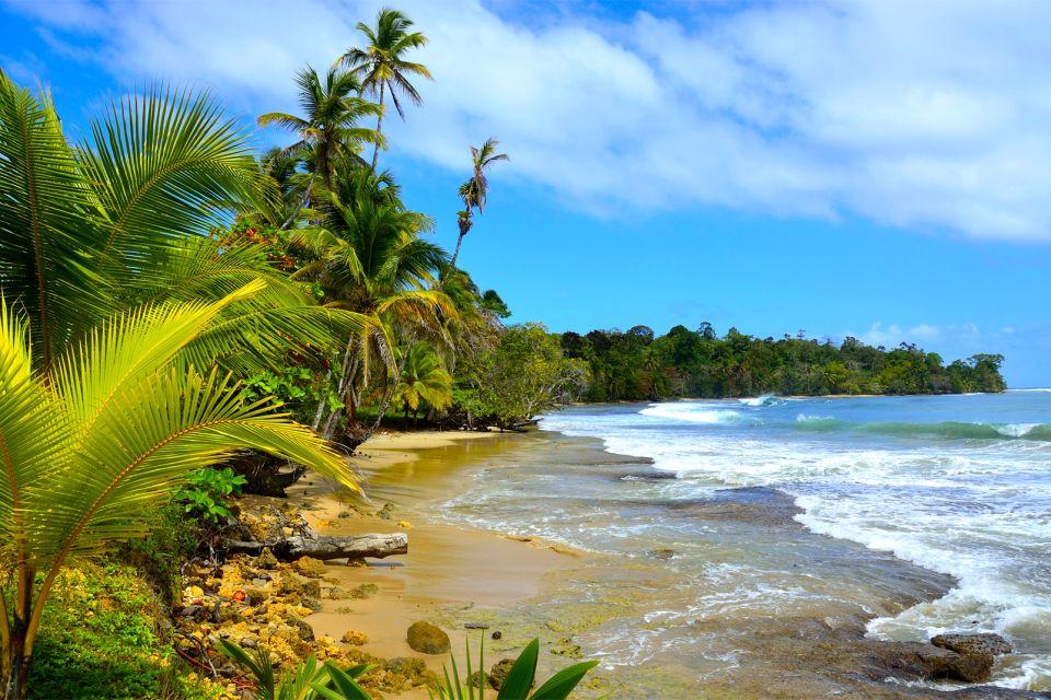 Amérique, Sud, Panama, île, san blas, plage, caraïbes