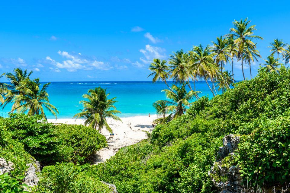 barbade, bay, bottom, caraïbes, amérique, mer, antilles