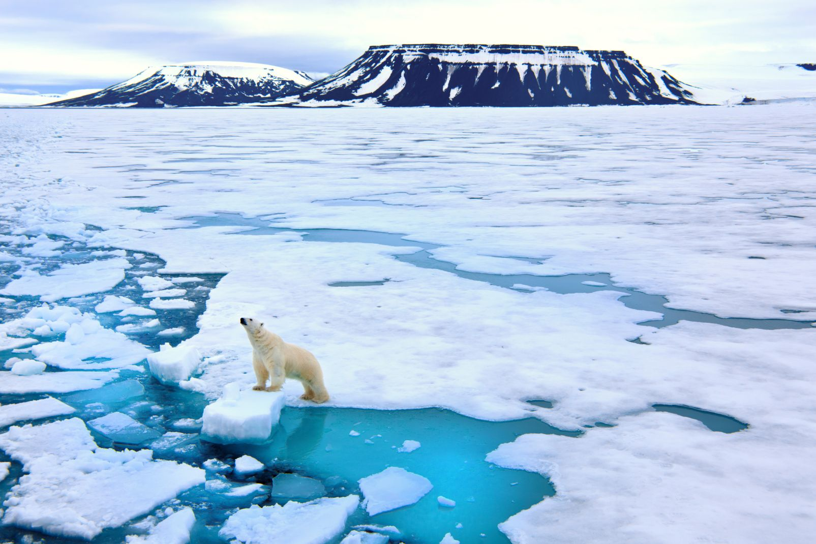 Svalbard and Jan Mayen Islands