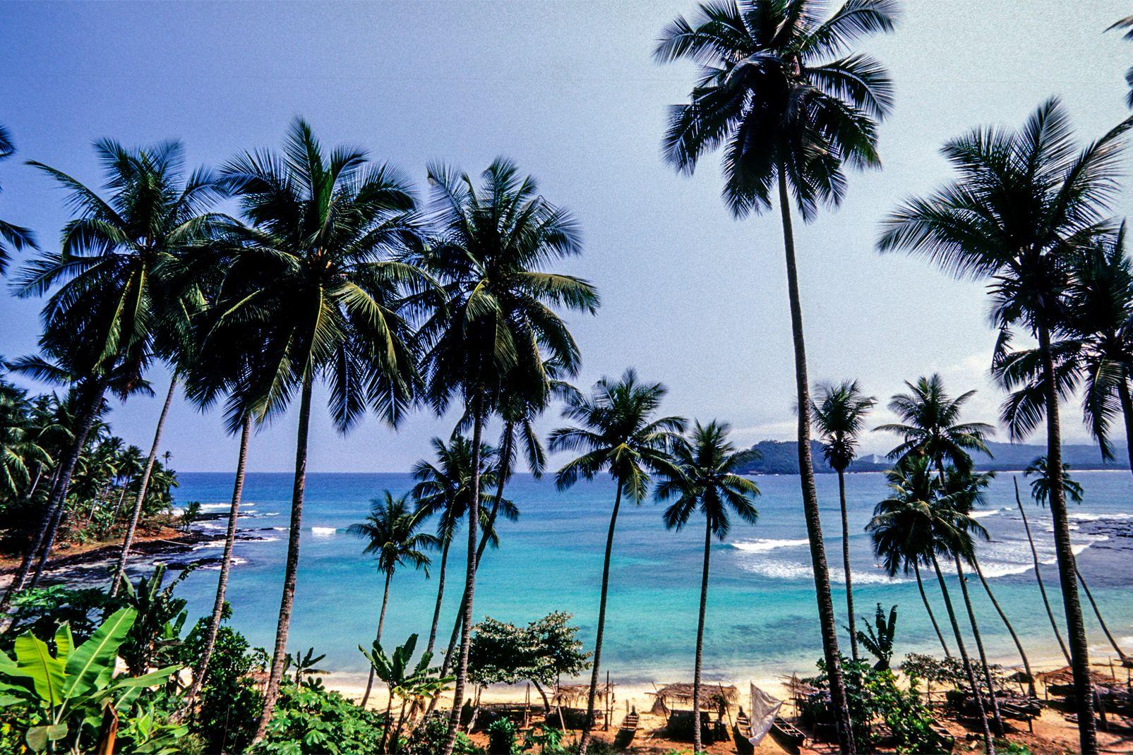 afrique, sao, tomé, et, principe, plage, sable, palmier, ocean, eau, mer, îlot, île, rolas