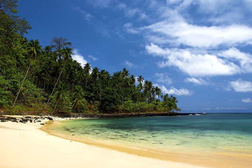 afrique, sao, tomé, et, principe, plage, sable, palmier, ocean, eau, mer, île
