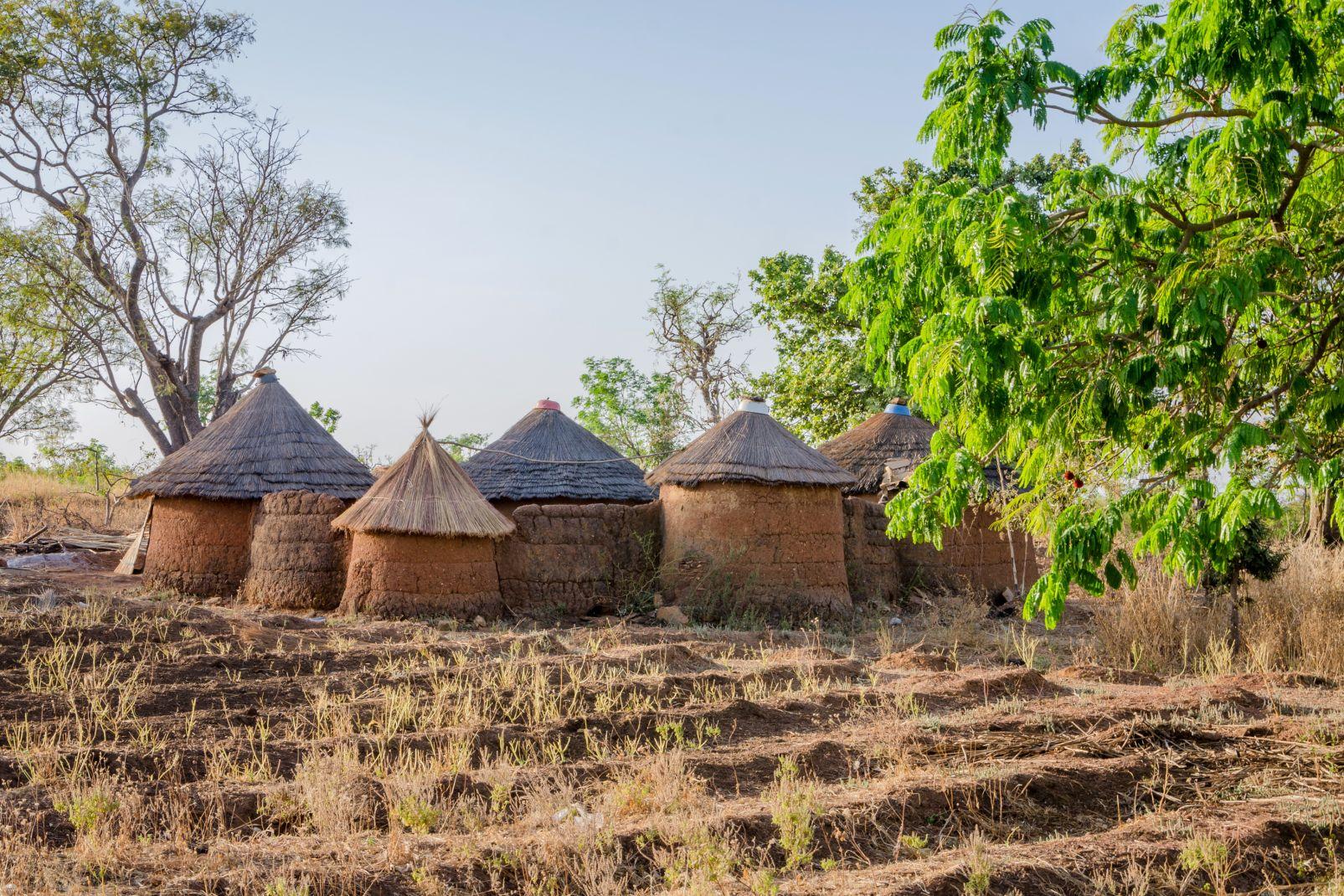 togo, afrique, tata, somba, tamberma, case, village