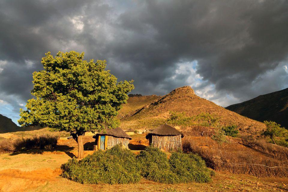 afrique, ouganda, faune, maison, montagne