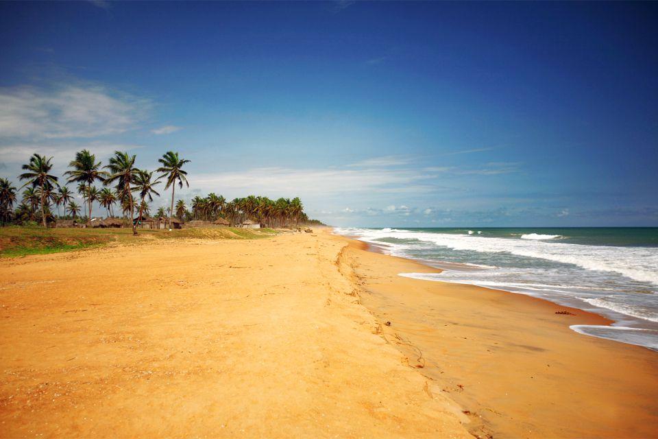 Afrique, Bénin, Ouidah, plage, sable, mer, vague, palmier