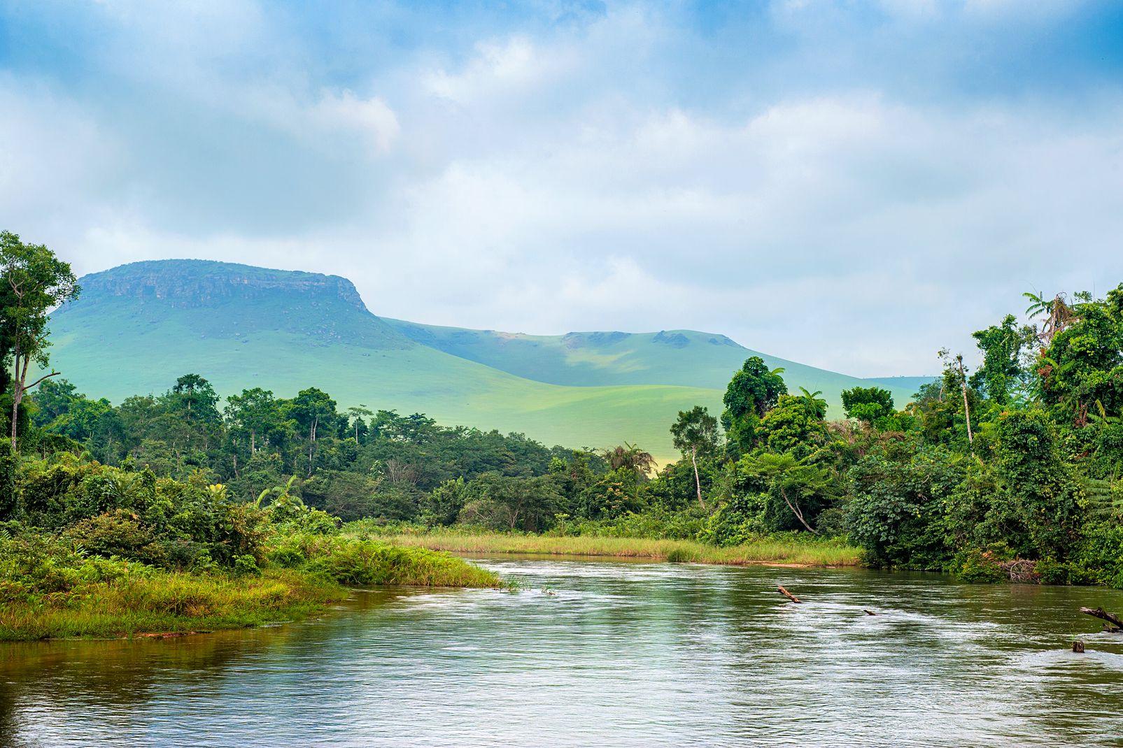 afrique, république, démocratique, congo, jungle, rivière, eau, végétation, paysage