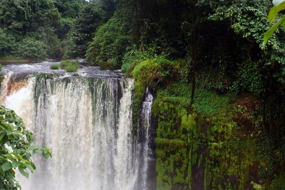 Afrique, gabon, forêt, chute, cascade