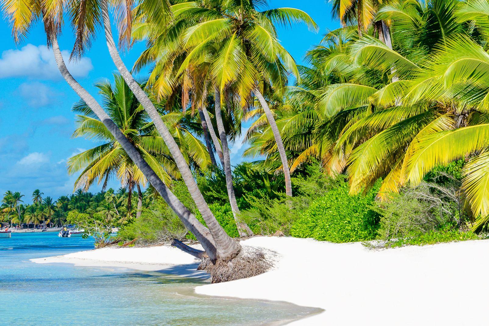 Le isole della Guadalupa