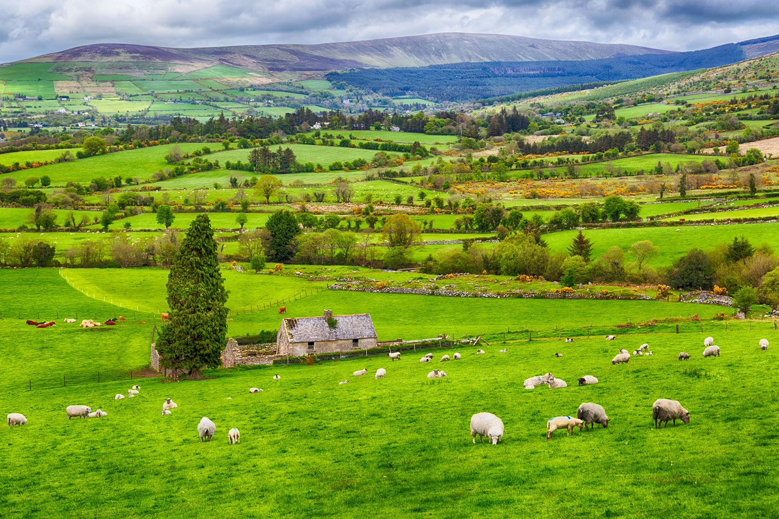 Northern Ireland, United Kingdom