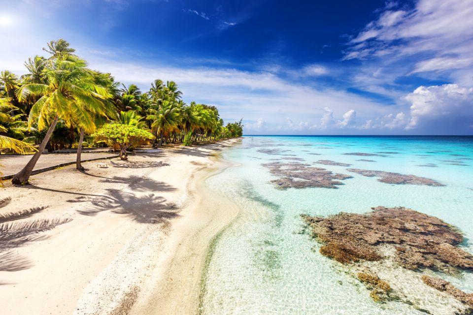 Polinesia Tuamotu, Polinesia