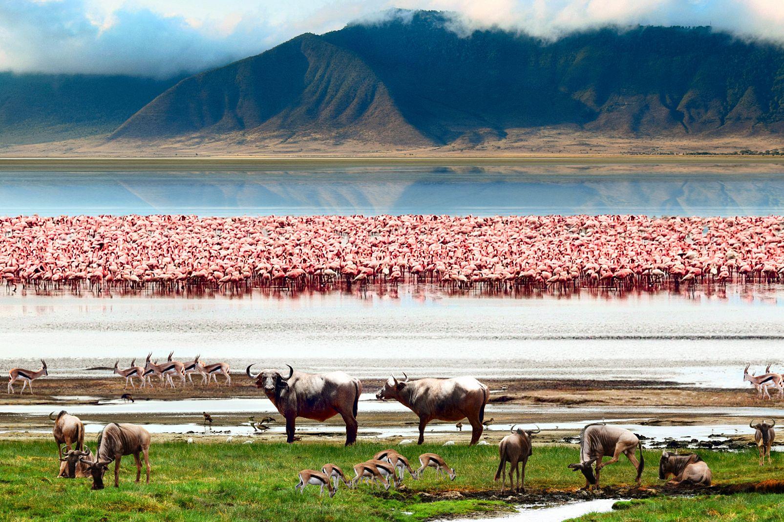 Decor 2017 Tanzanie Infos Et Photos Guide De Voyage Pour Visiter