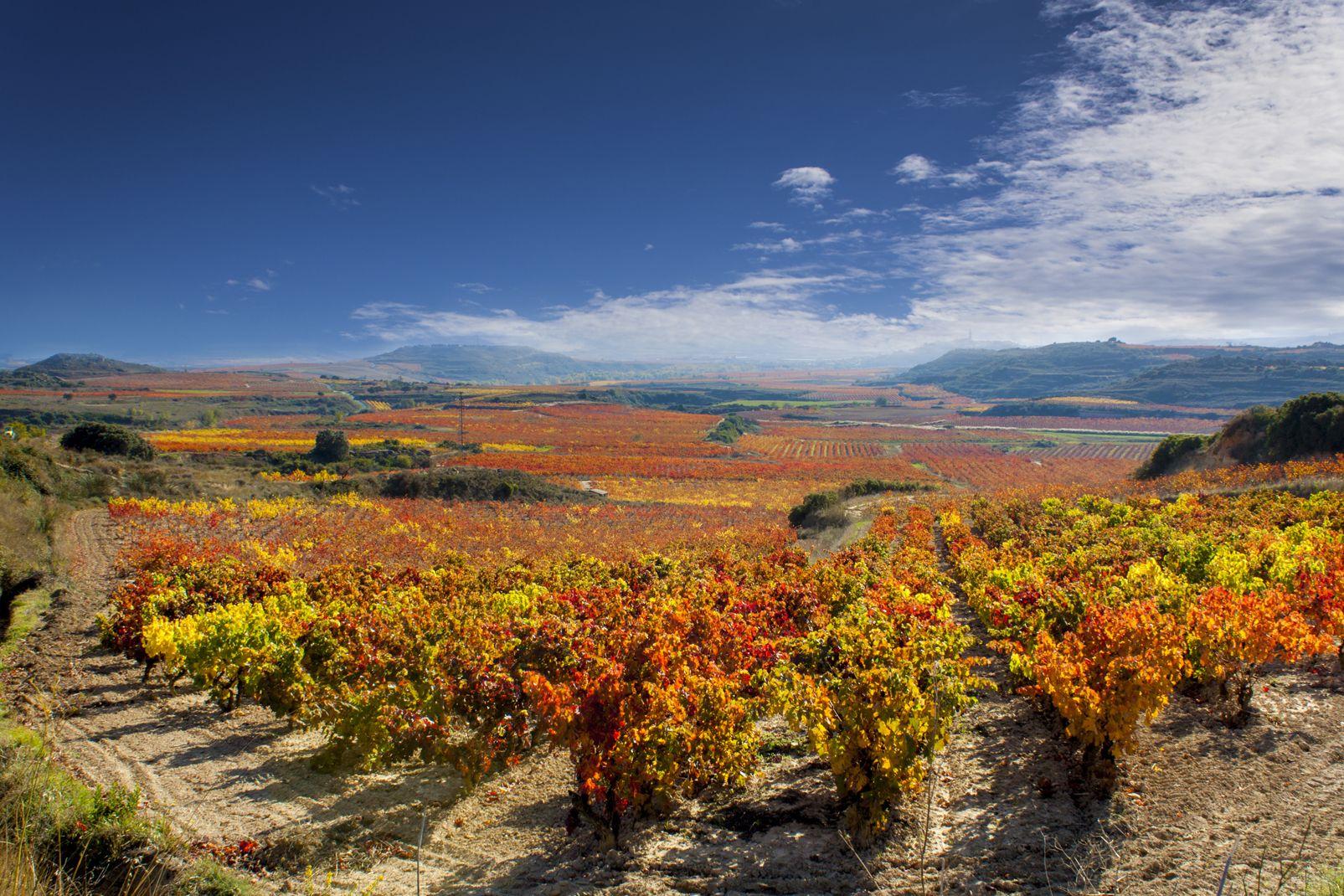 La Rioja, Spagna, La Rioja, Spagna