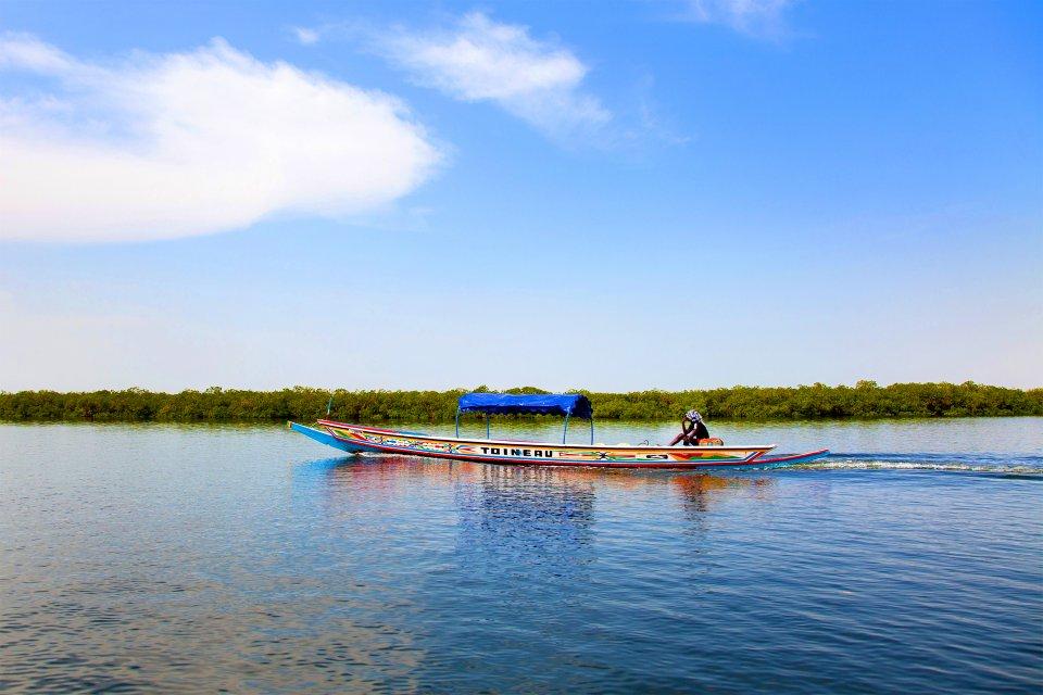 Afrique, Sénégal, Sine Saloum, delta, mangrove, pirogue, pêcheur, traversée
