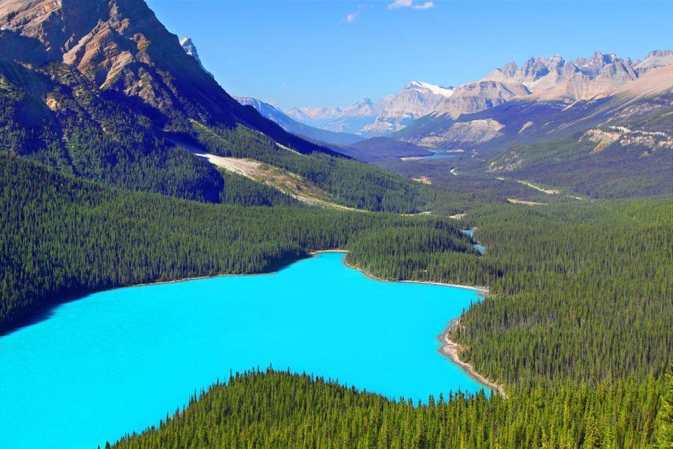 Alberta, canada, amérique, amérique du nord, peyto, lac, unesco, parc National, Banff, foret, parc, rocheuses