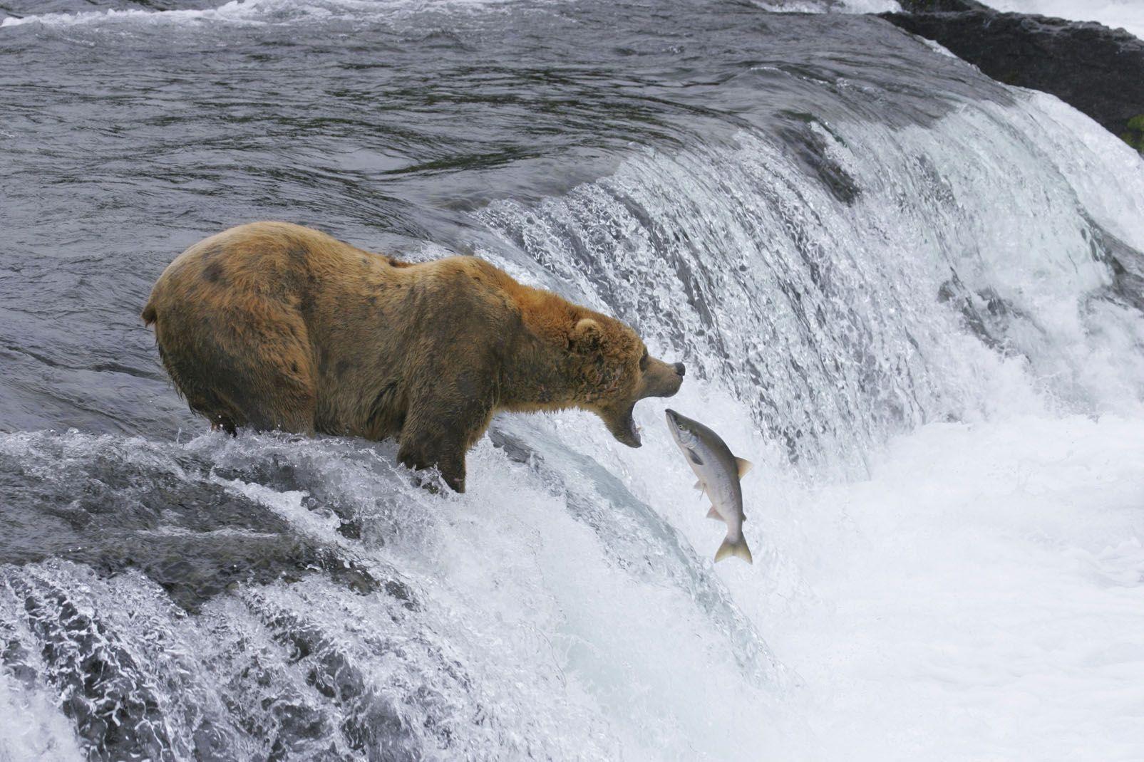 Alaska, United States of America, Alaska, United States of America