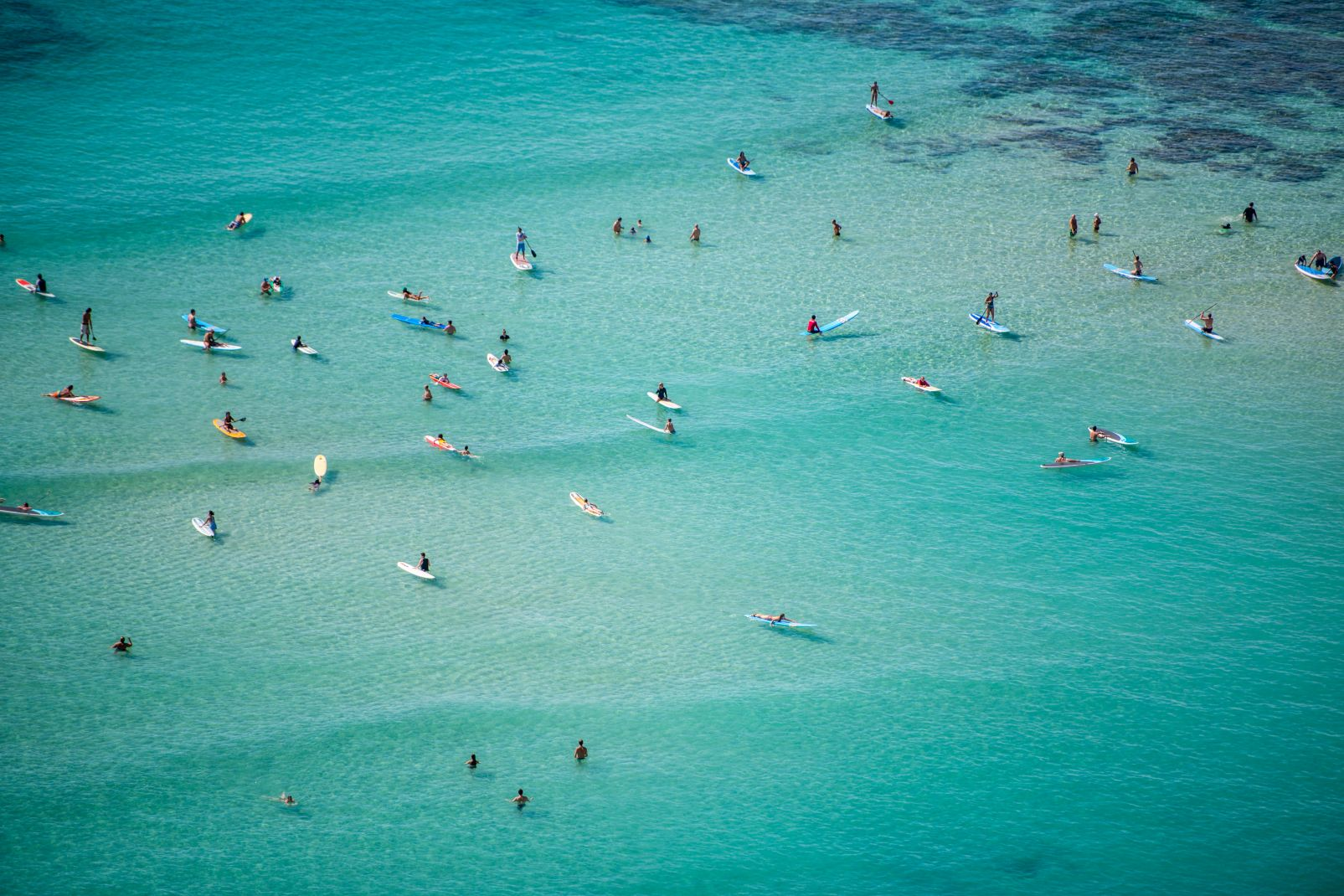 Amérique, USA, Etats-Unis, Hawaï, Hawaii, surf, surfeuse, mer, bain, océan, sport, glisse, honolulu, waikiki, oahu