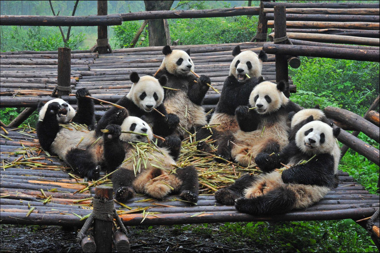 Sichuan, Chine