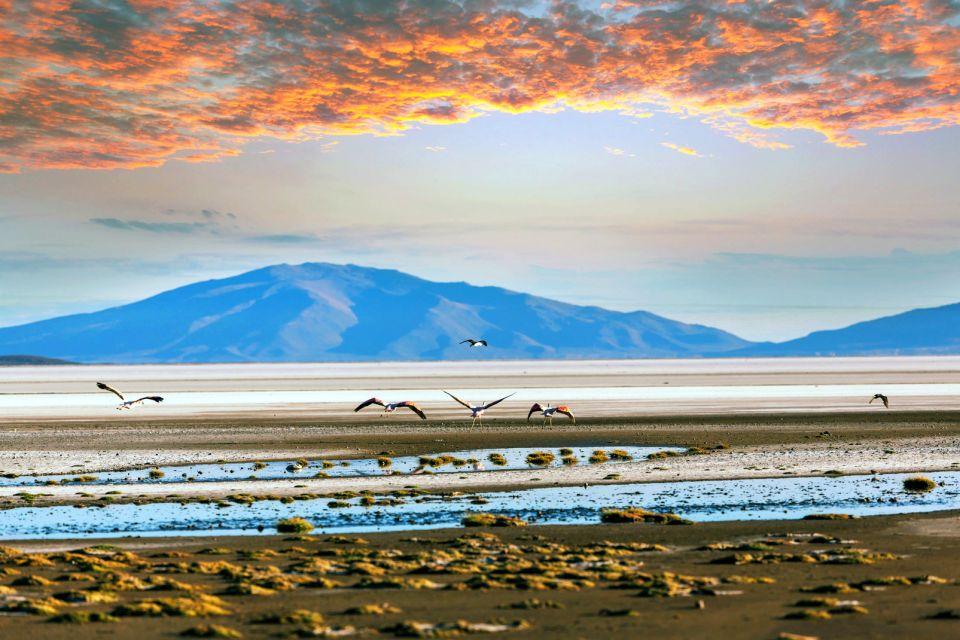 Chile, Chile