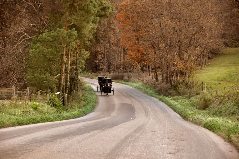 Pennsylvanie, Amish, Cheval, BUGGY, Religion, Transport, Midwest, Middle West, amérique, USA