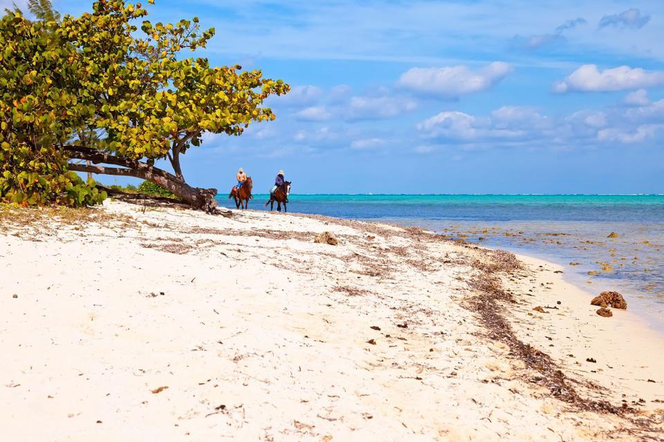 Caraïbes, Iles Cayman, Cayman, Grand Cayman, seven mile beach, équitation, cheval, plage, promenade, baignade,