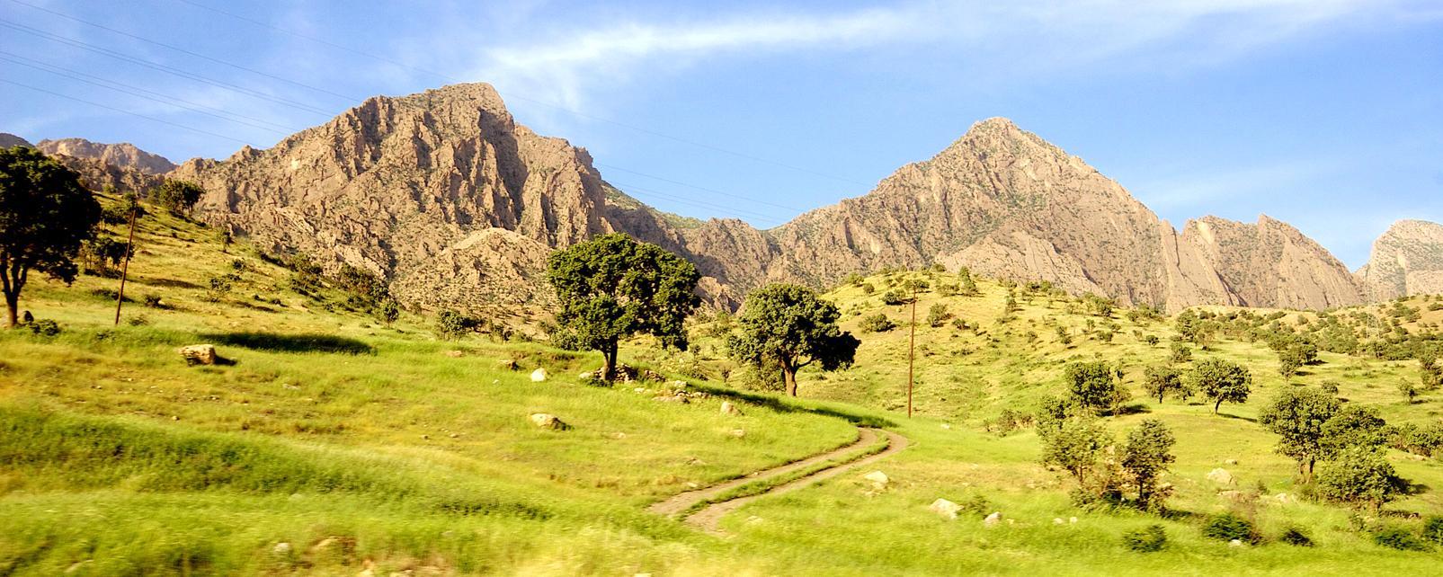 Moyen-Orient, Irak, Kurdistan, montagne, arbre, route, prairie,