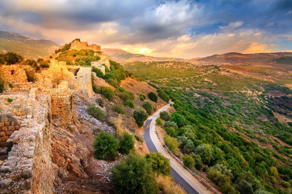 Moyen-Orient, Israël, Nimrod, forteresse, route, arbre, ruine, montagne, forêt,