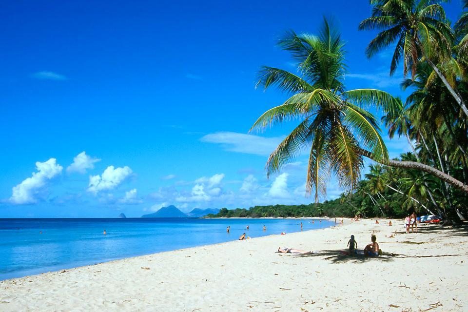 Caraïbes, Martinique, plage, baignade, sable, palmier, montagne, mer,