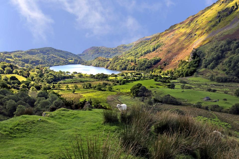 País de Galés