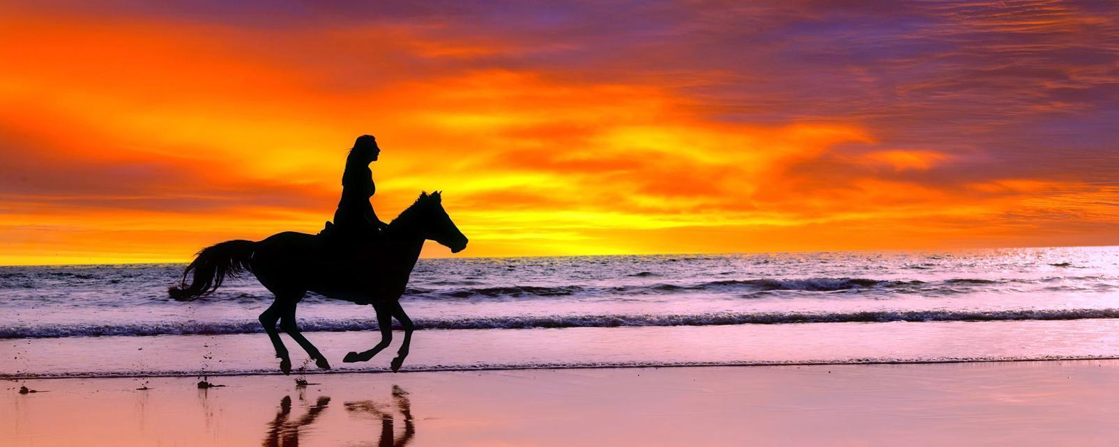 Amérique, Amérique du Sud, Salvador, plage, cheval, équitation, détente,